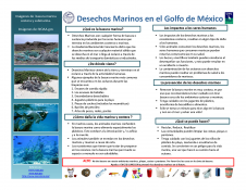 Desechos Marinos(Marine Debris)