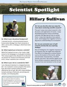 Hillary Sullivan-231x300